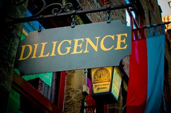 due-diligence(1)